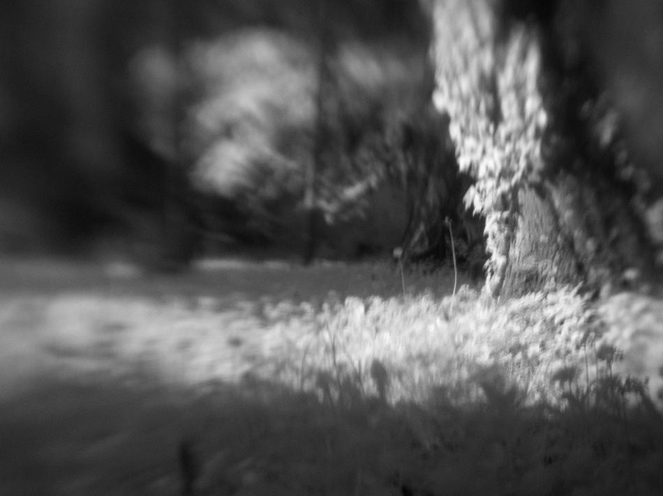 random focus 03