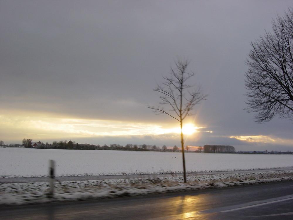 raod to pattensen / always the sun...
