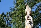 Rapaz y ardilla talladas en el tronco de un árbol (Le Mans/ Francia)