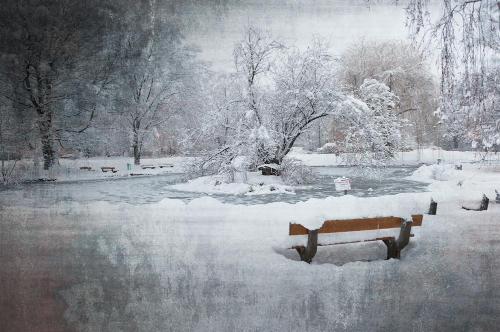Rapoldipark - Ein Winter, wie im Märchen!