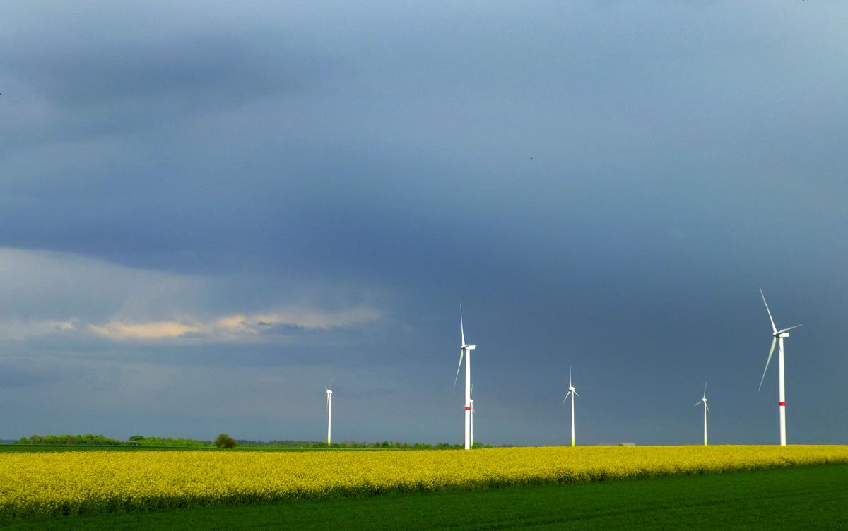 Rapsfelder und Windräder kurz vor dem Regen