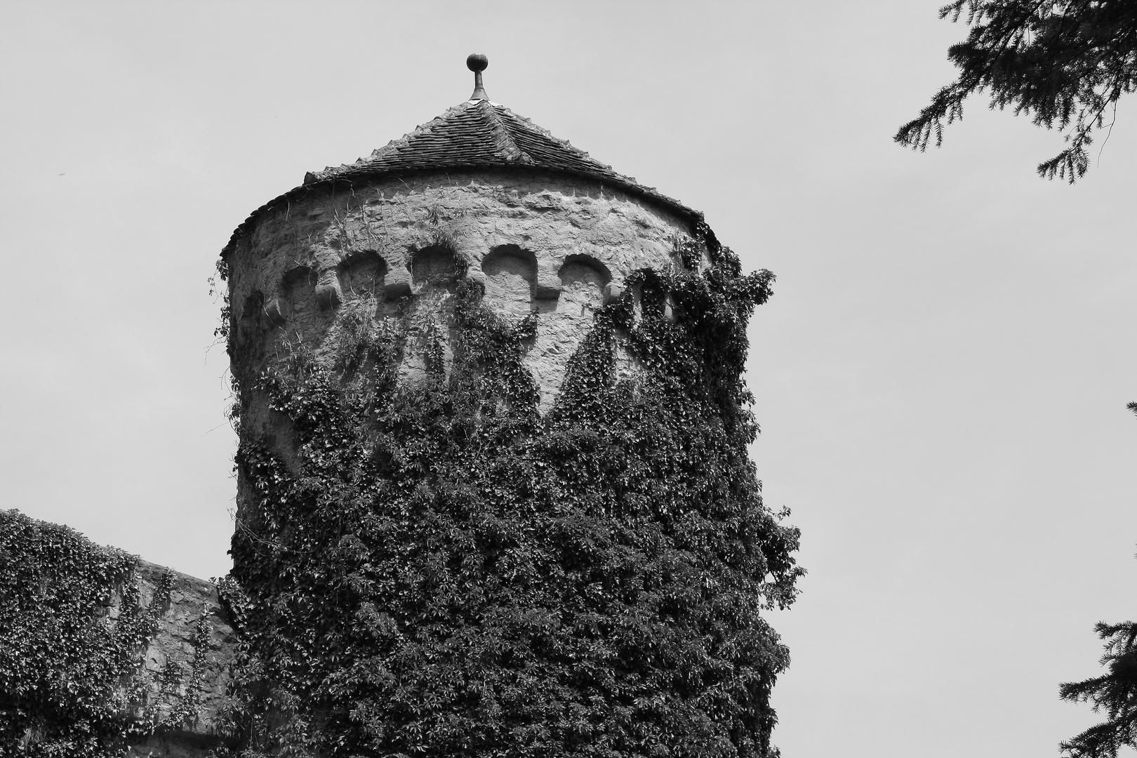 Rapunzelturm