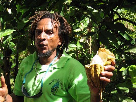 Rastamann mit Kakaofrucht