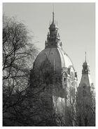Rathaus im Dickicht