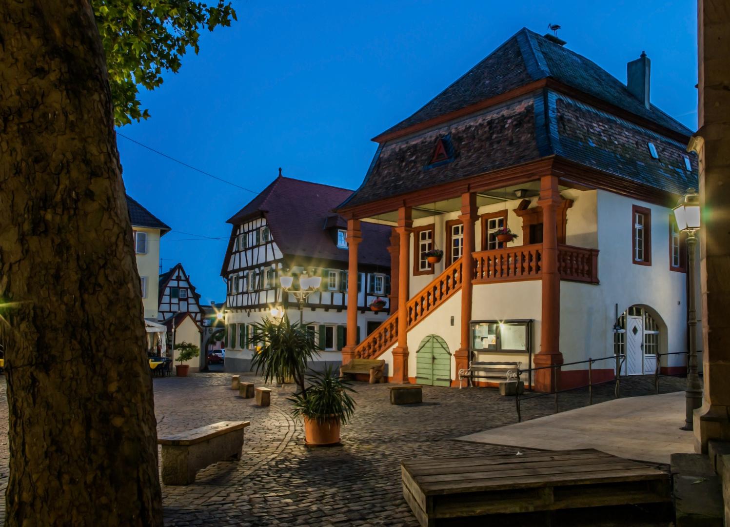 """""""Rathaus in Freinsheim"""""""