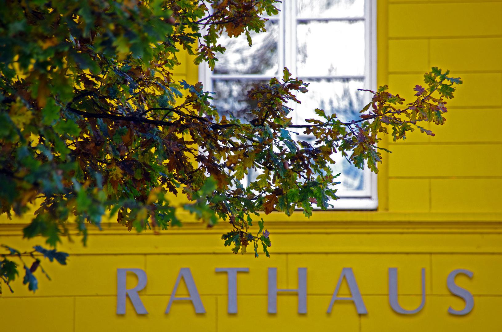 Rathaus Ratzeburg 3