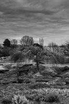 Rather Morbid Killesberg Park Impression