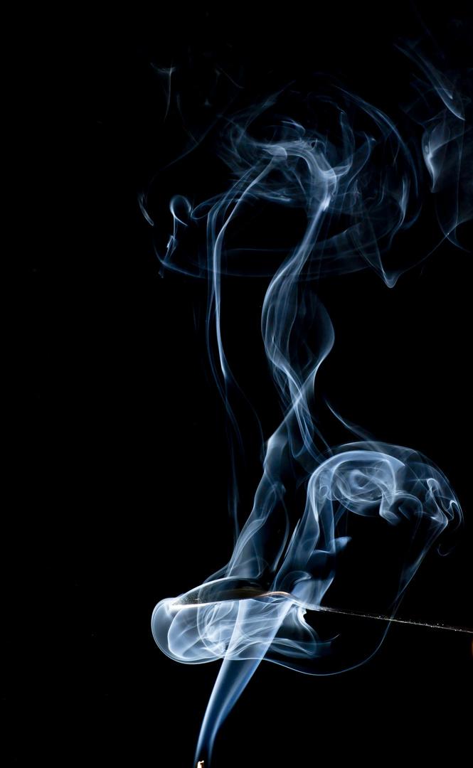 Rauch (2)