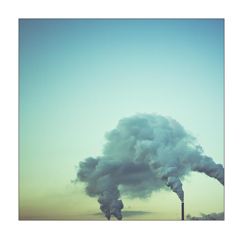 Rauch der Sinne