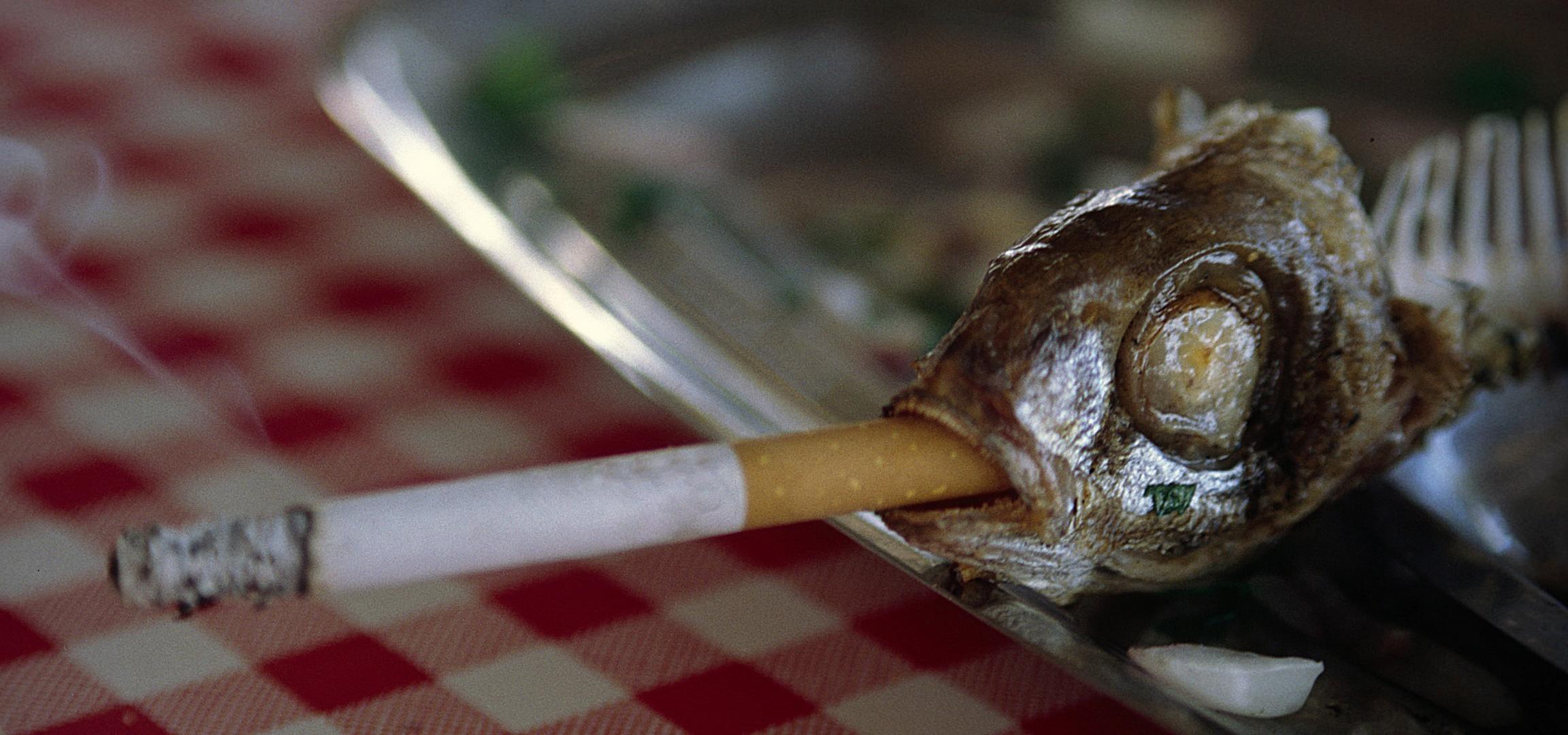 Rauchen macht schlank !