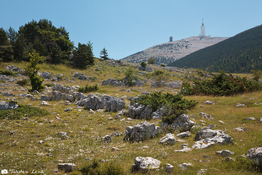 Rauf zum Mont Ventoux
