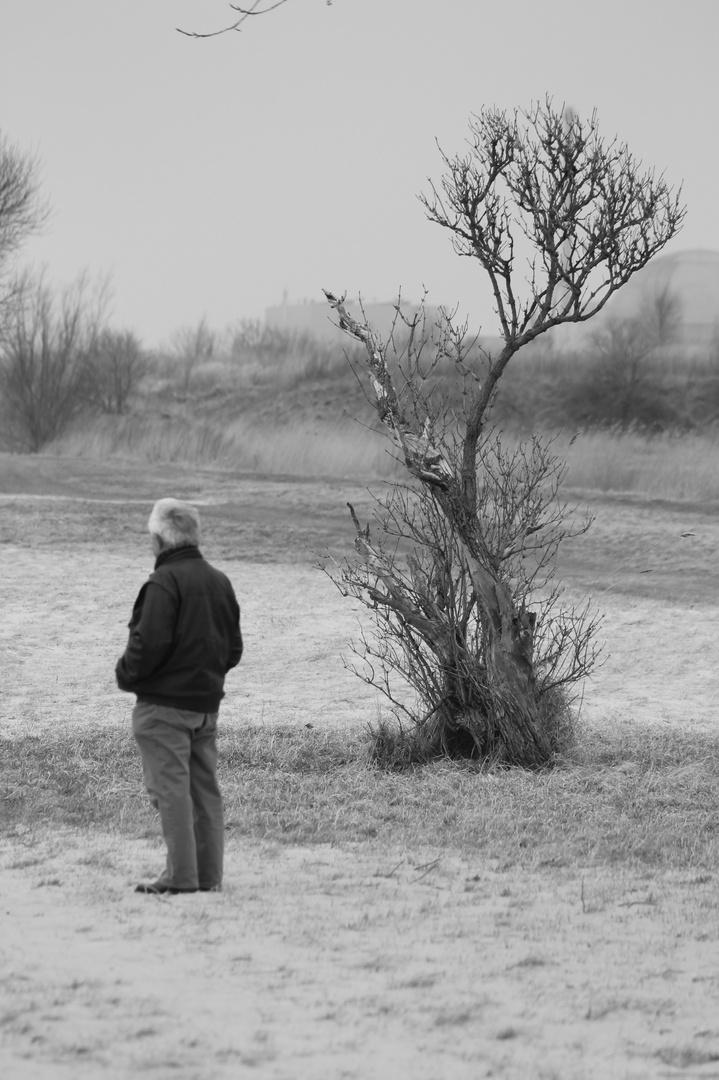rauhe landschaft