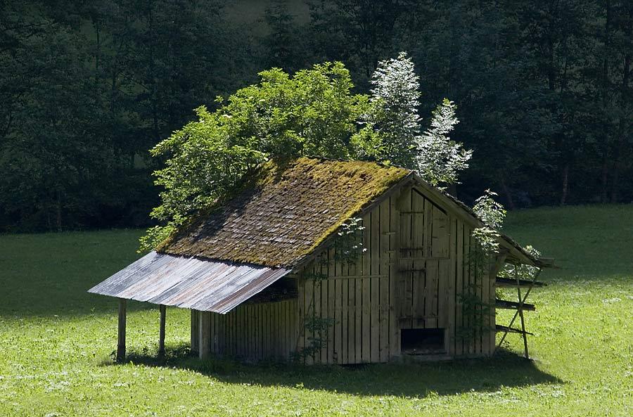 Raum ist auf der kleinsten Hütte