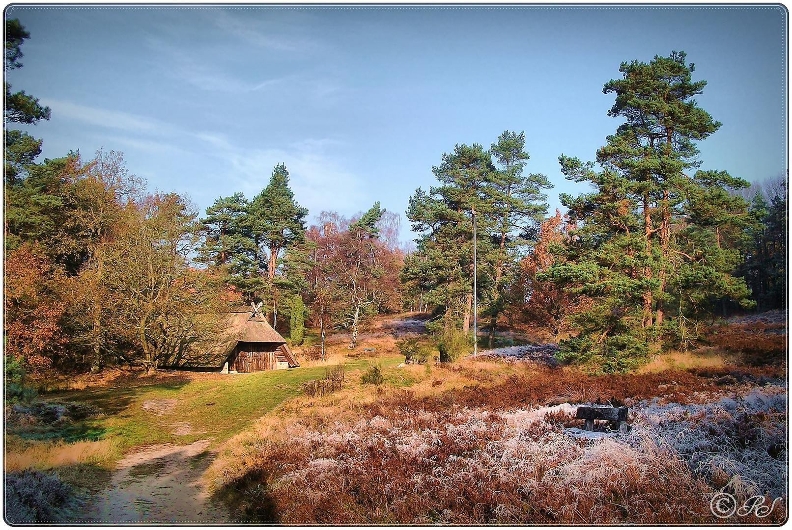 Raureif am Schafstall, Heidegarten Bispingen