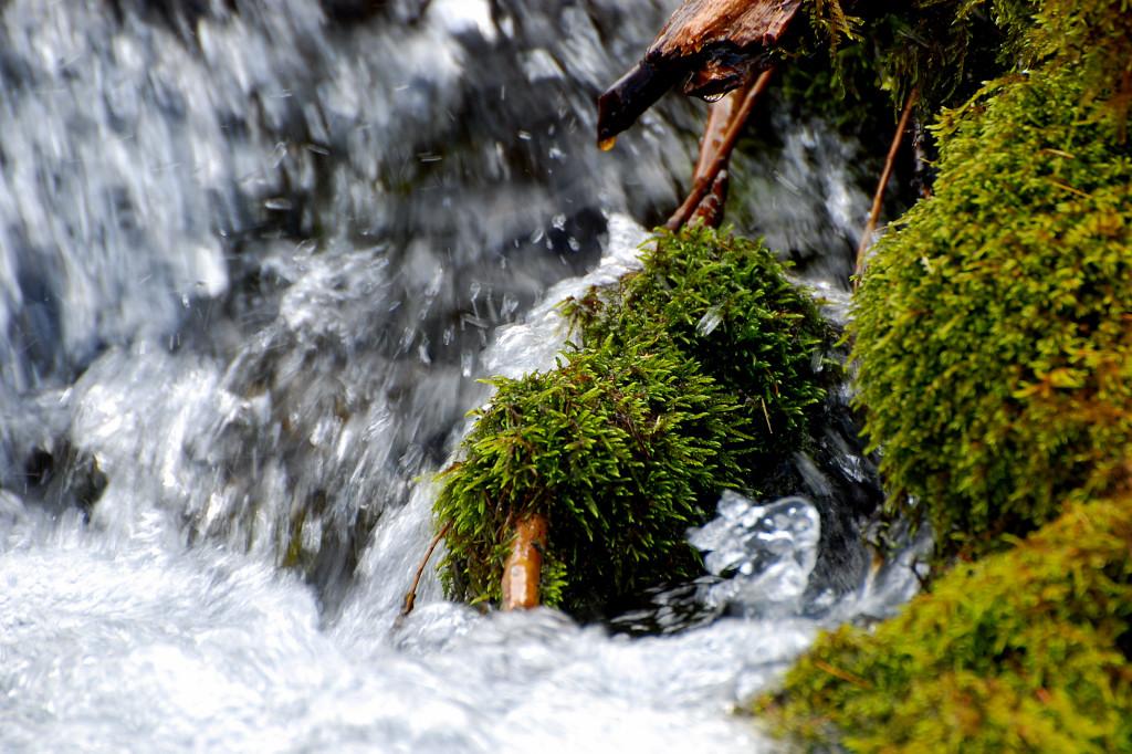 Rauschende Wasser