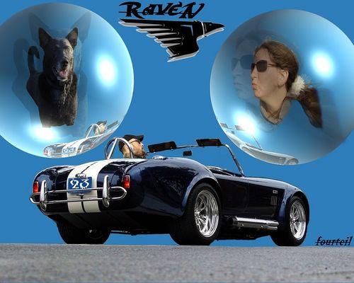 RaveN @ Cobra