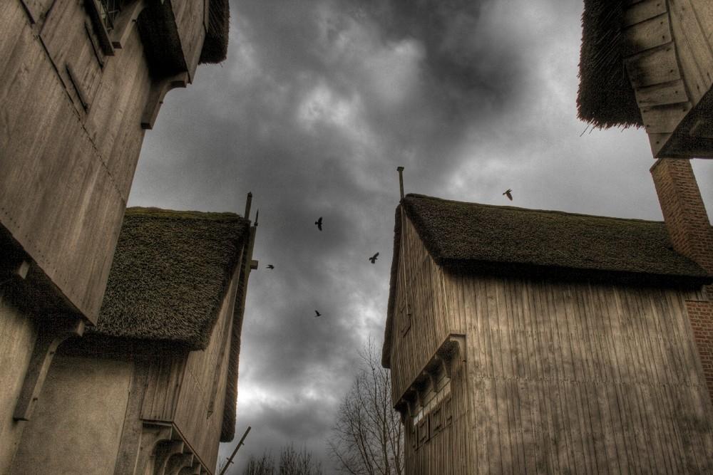 Raven Home