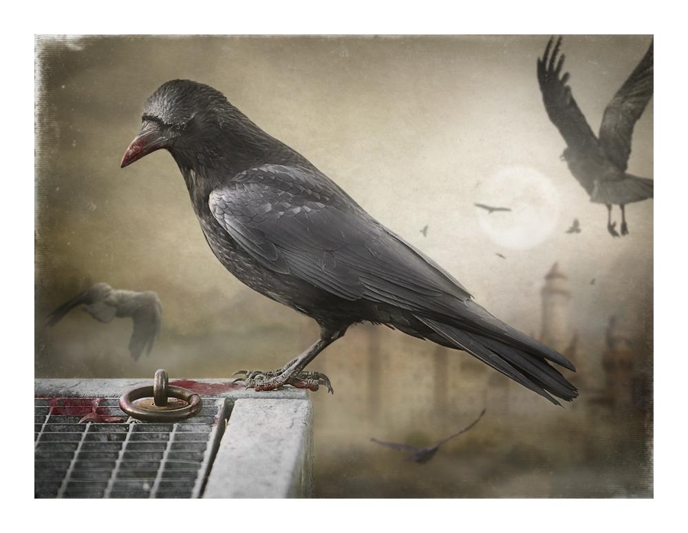 Ravendark.