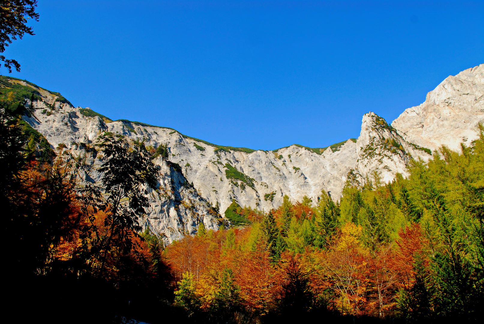 Raxregion im Herbst NÖ ( A )