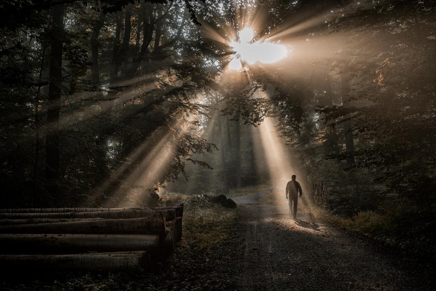 """""""Ray Of Light"""""""