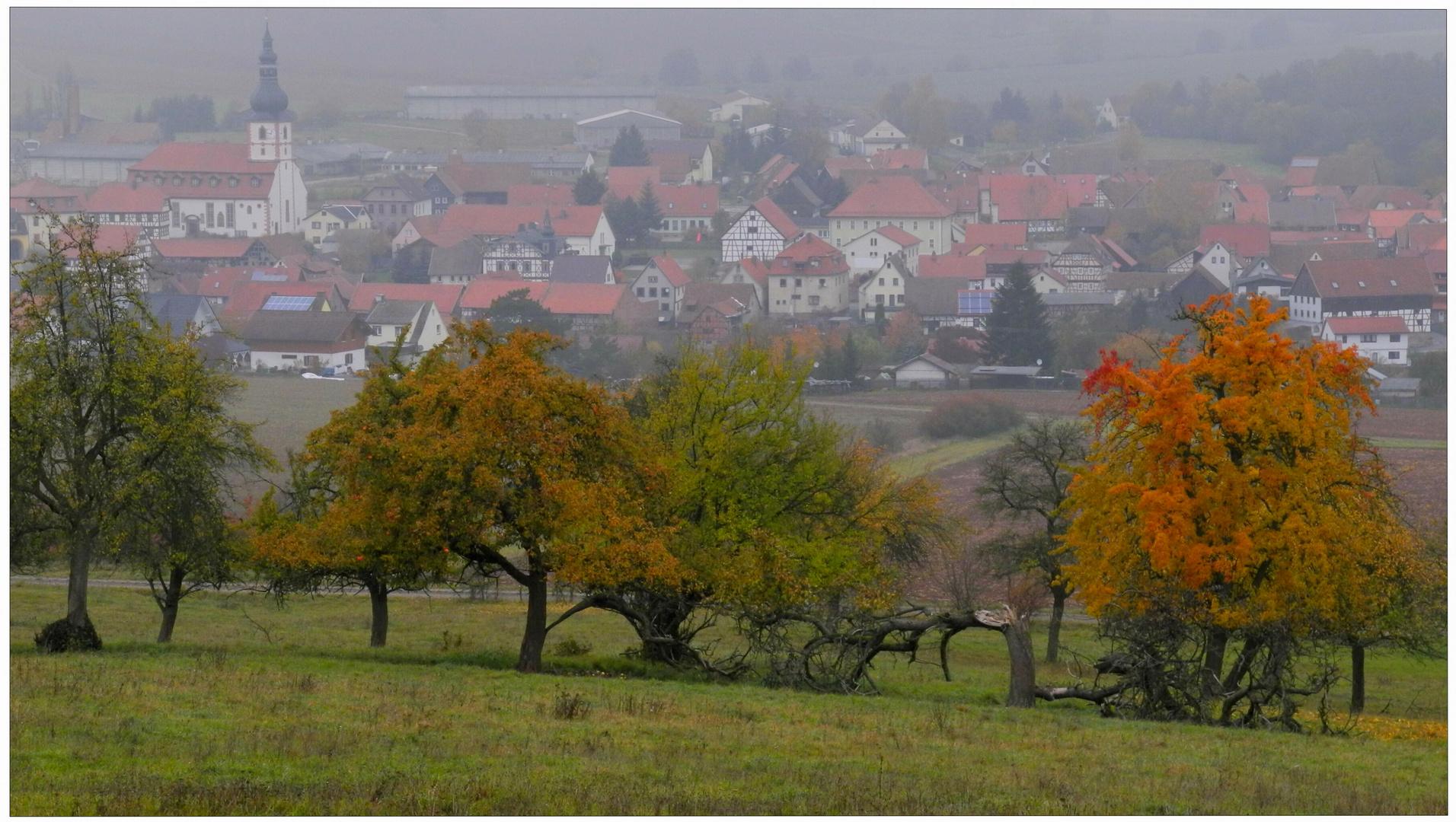 """Árboles frutales en la montaña """"Hutsberg"""", en el fondo podéis ver mi pueblo Helmershausen"""