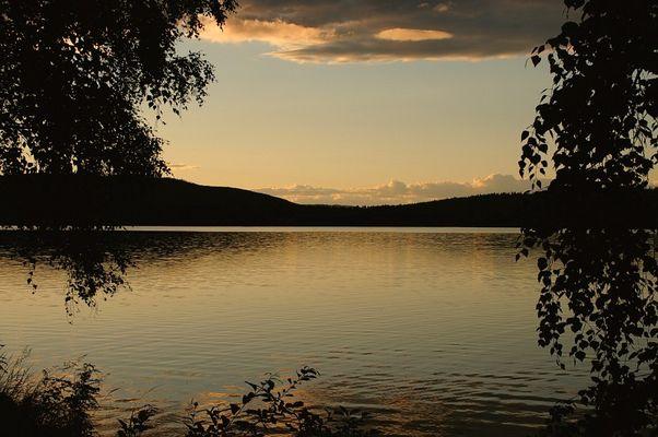 Årbosjön