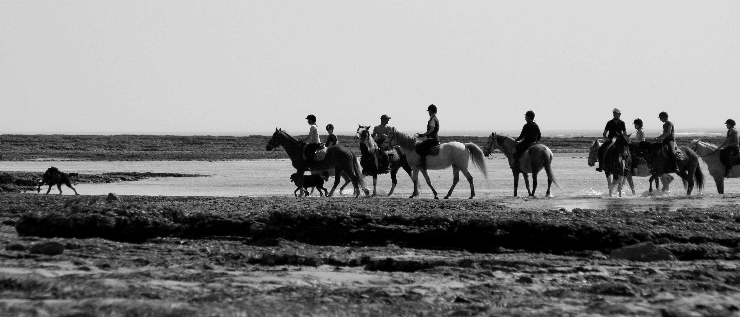 Ré à cheval