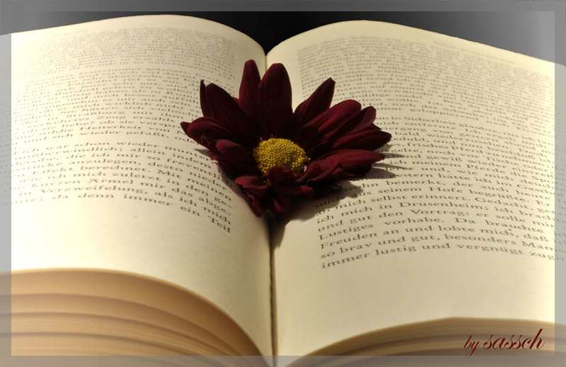 Read the Flower