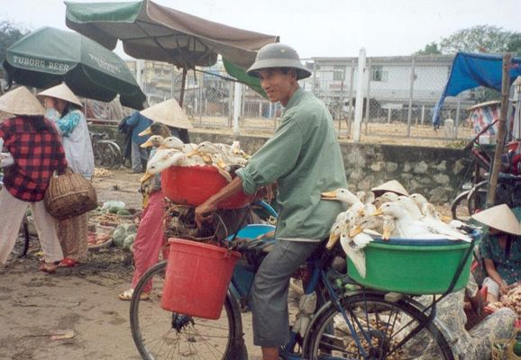 Ready for the Market in Hue