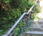 Reb Treppe