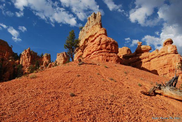 Red Canyon (USA)