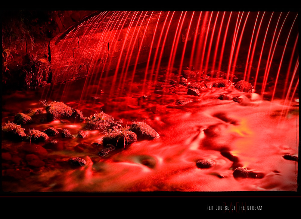 """"""" Red Course Of The Stream """""""