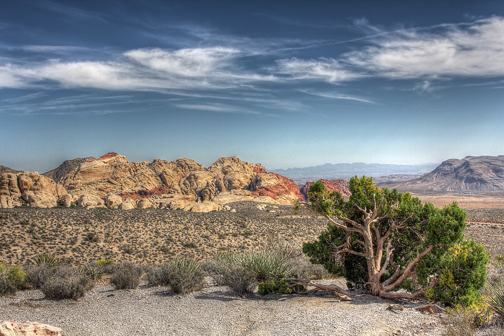 Red Rock Canyon HDR (6)