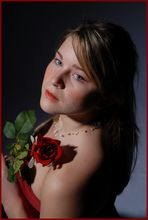 Red Rose for a red Lady