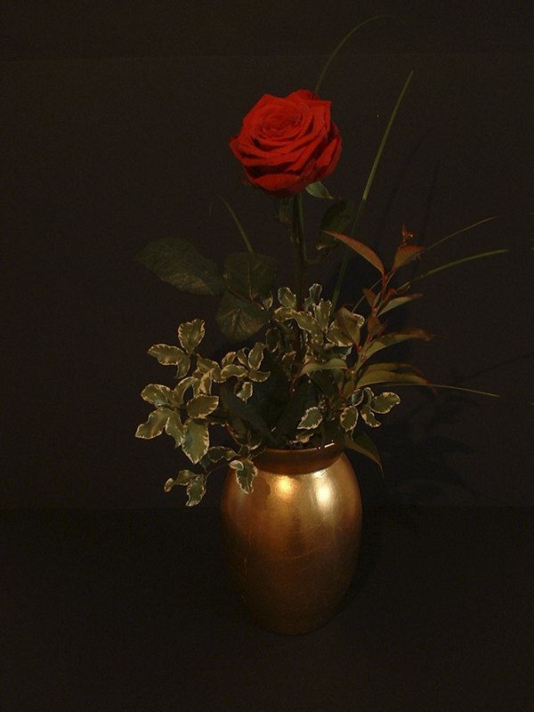 Red Rose, Golden Vase