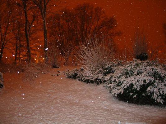 Red Snow Night