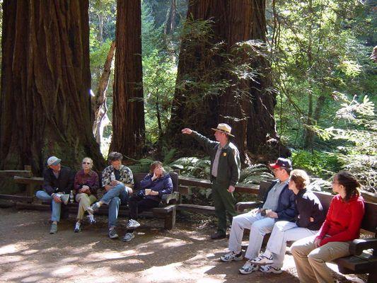 Redwoods, Ranger & Tourist Guys