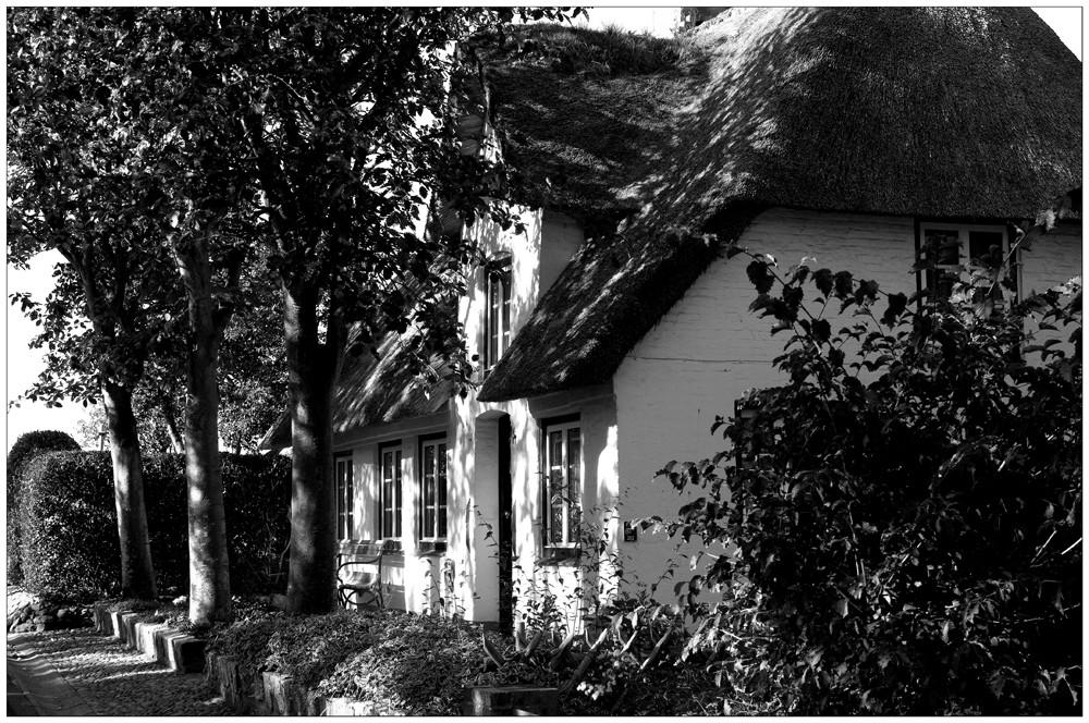 Reetdachhaus in Oevenum II