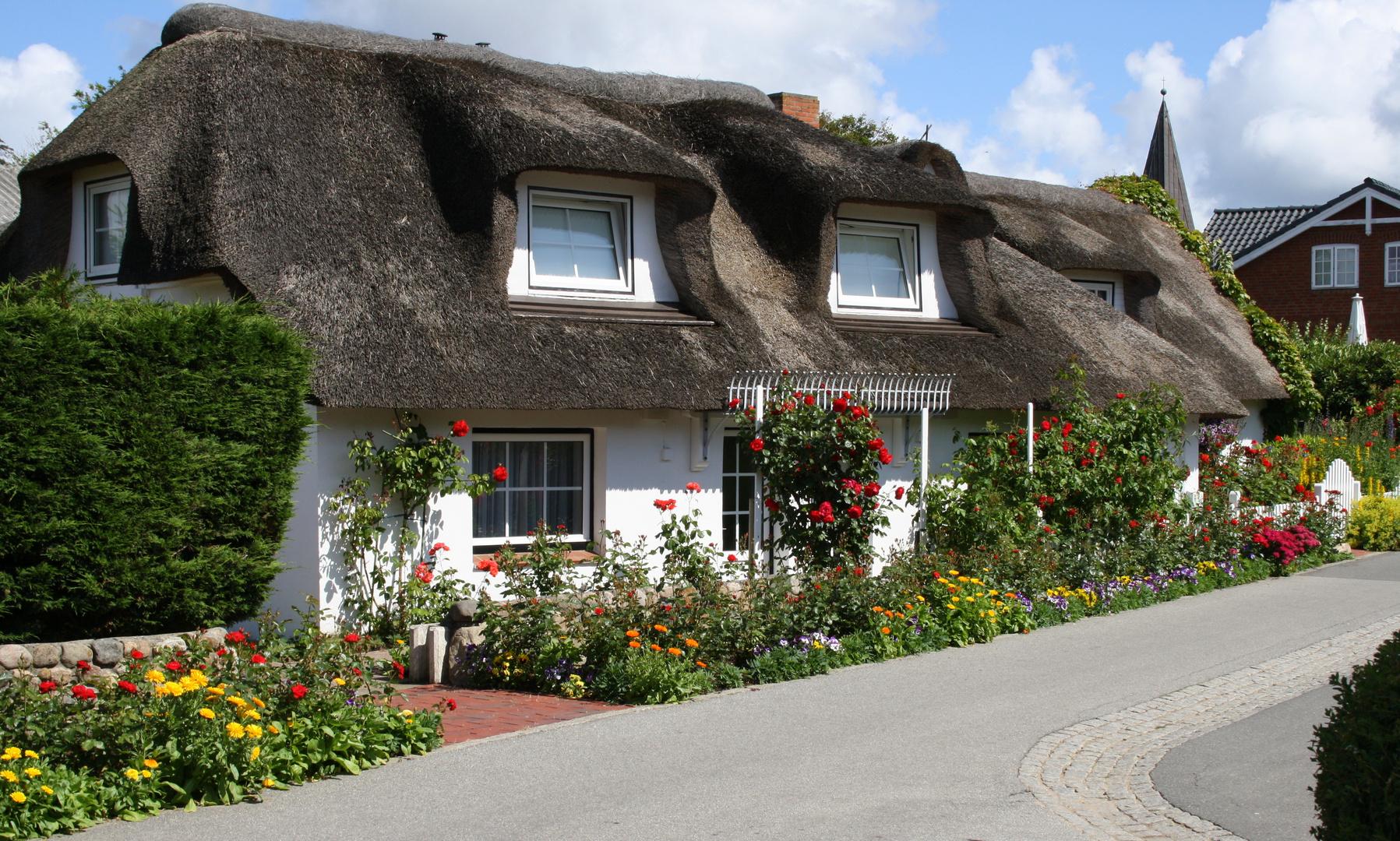 Reetdachhaus mit Blumen auf Amrum
