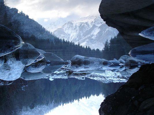 reflected world
