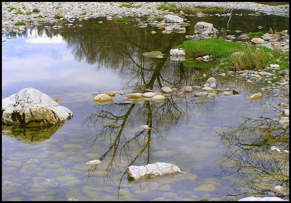 Reflections #4