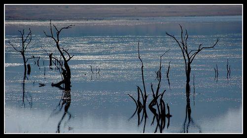 Pilanesberg-Nationalpark