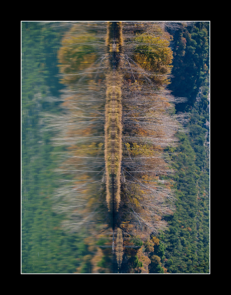 Reflejo vertical