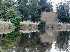 reflejos de mi rio