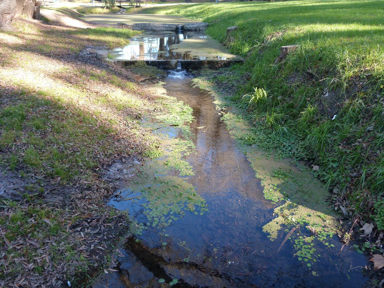Reflejos en aguas del arroyo