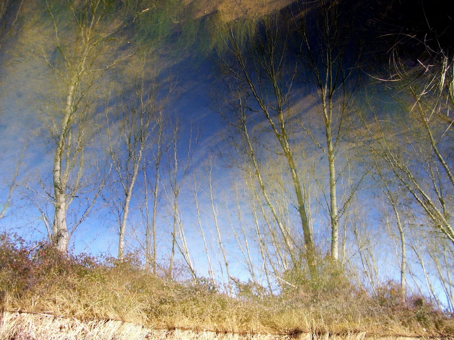 REFLEJOS...FERNANDO LÓPEZ   fOTOGRAFÍAS...
