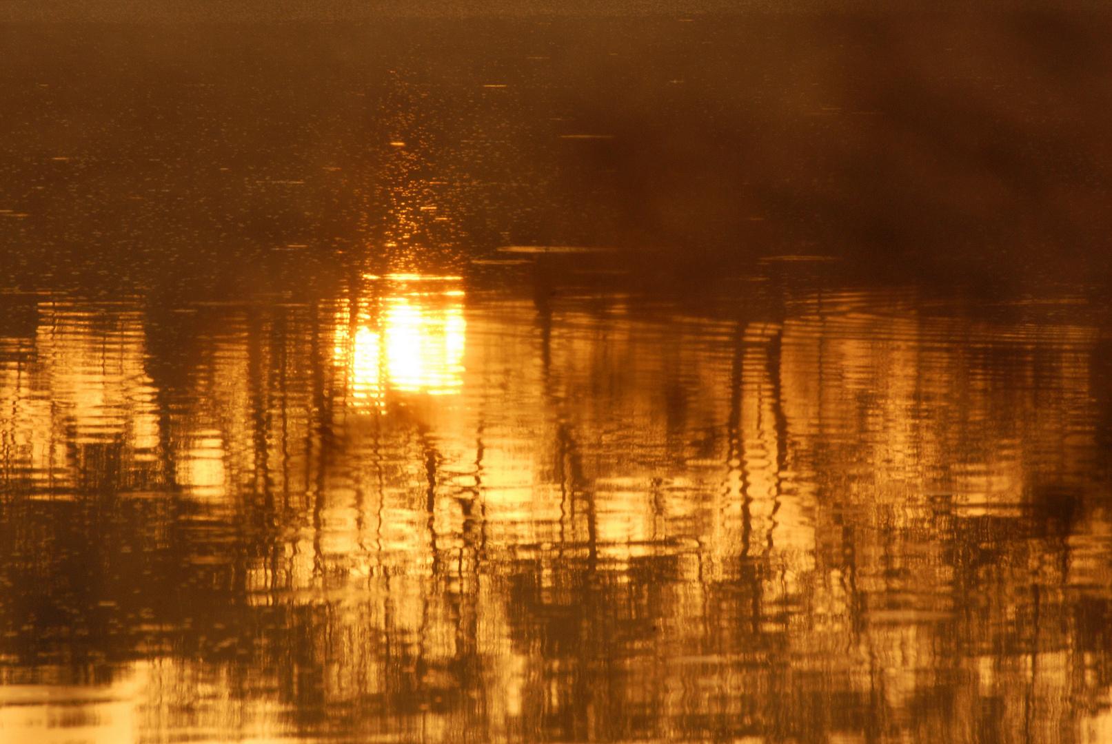 Reflet du roi soleil dans son rituel du levé