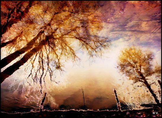 Reflet d'un autre monde...