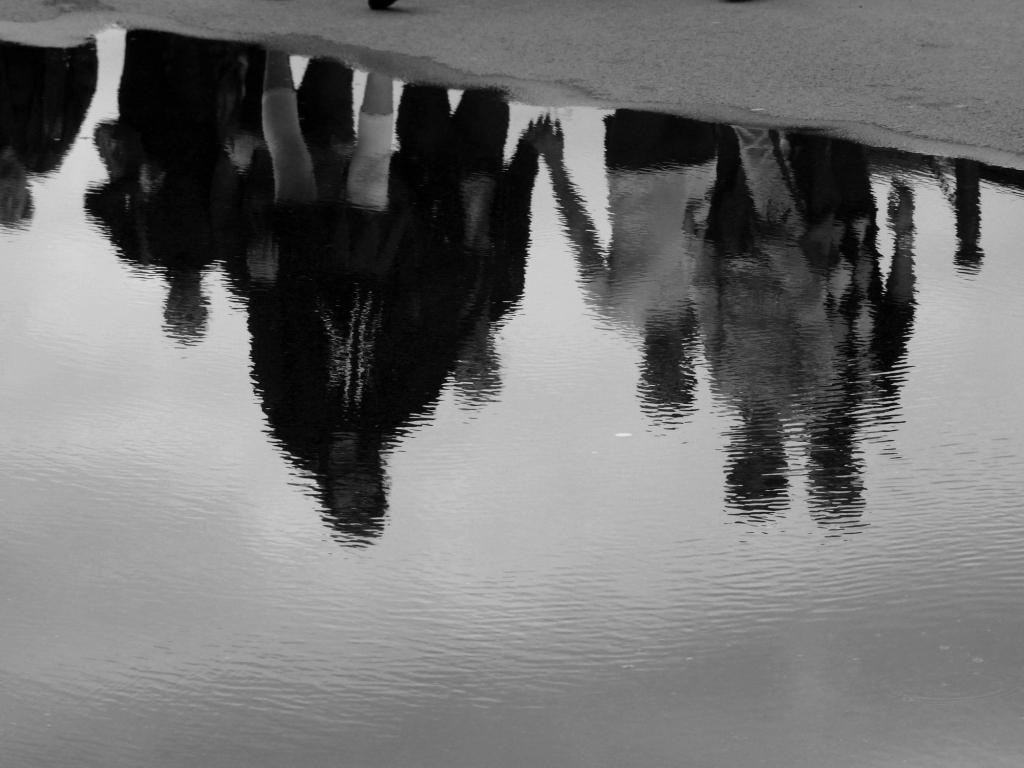 Reflets après la pluie