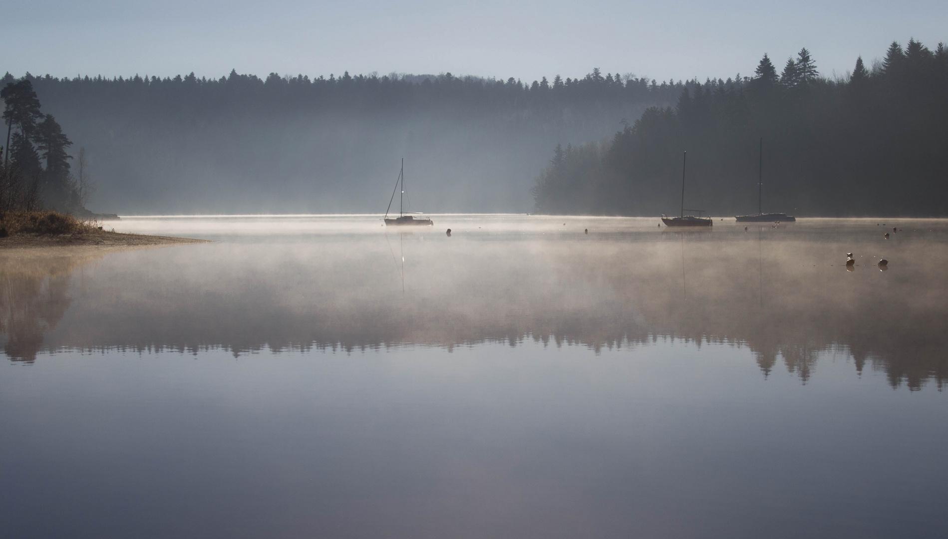 Reflets dans la brume
